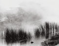 Photographs:Contemporary, BRUCE BARNBAUM (American, b. 1943). Untitled (Weeds inSwamp), 2001. Gelatin silver, 2001. Paper: 16 x 20 inches (40.6x...