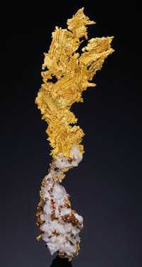 NATIVE GOLD CRYSTALS ON MATRIX