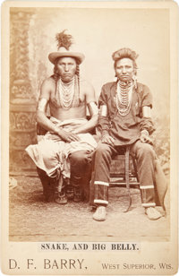 BULL SNAKE AND HALF-YELLOW FACE c. 1882