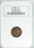 Proof Indian Cents, 1891 1C PR65 Red NGC....
