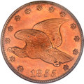 Patterns, 1855 P1C Flying Eagle Cent, Judd-168 Original, Pollock-193, R.4--Improperly Cleaned--NGC Details. Proof....