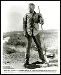 "Paul Newman in ""Cool Hand Luke"" (Warner Brothers, 1967). Photos (18) (8"" X 10""). Drama. ... (Total:..."