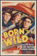 """Movie Posters:Action, Born to Be Wild (Republic, 1938). One Sheet (27"""" X 41""""). Action....."""