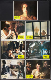 """Midnight Express Lot (Columbia, 1978). Lobby Cards (14) (11"""" X 14""""). Drama. ... (Total: 14 Items)"""