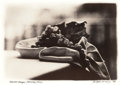 Photographs:Contemporary, ANDREW VRACIN (AMERICAN, 20th Century). Harvest Grapes,Positano, Italy, 1994. Chromogenic, circa 1994. 7-1/4 x 11inche...