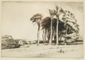 Prints:European Modern, PERCY W.I. BUCKMAN (British, 1865-1935). Landscape with Trees. Etching. 9in. x 13in.. Signed in pencil at lower right ... (Total: 1 Item)
