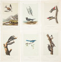 Antiques:Posters & Prints, John James Audubon. Six Plates from The Birds of America,Octavo Edition. [Including:] 'Red-cockaded Woodpecker,... (Total: 6Items)