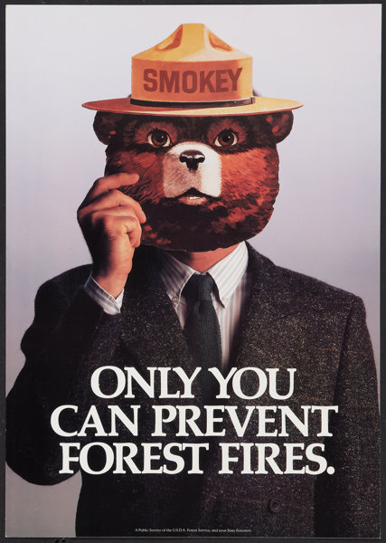 Smokey The Bear Usda Forest Service 1980s Posters 2 Lot