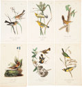 Antiques:Posters & Prints, John James Audubon. Six Plates from The Birds of America, Octavo Edition. [Including:] 'Blackburnian Wood-Warble... (Total: 6 Items)
