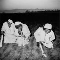 Photographs:Contemporary, LIU ZHENG (Chinese, b. 1969). Three Women in a Country Funeral,Long Xian, Shaanxi Province, 2000. Gelatin silver, 2006...