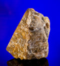 Amber, CRETACEOUS AMBER FROM NEW JERSEY. ...