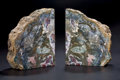 Fossils:Paleobotany (Plants), COLORFUL PETRIFIED WOOD BOOKENDS. ...