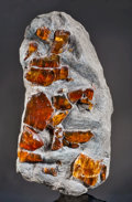 Amber, DOMINICAN AMBER IN SILTSTONE. ...