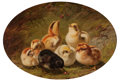 Fine Art - Painting, American:Antique  (Pre 1900), ARTHUR FITZWILLIAM TAIT (American, 1819-1905). A Brood ofChicks, 1865. Oil on millboard . 9 x 12 inches (22.9 x 30.5cm...