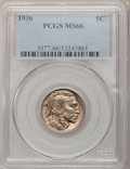 Buffalo Nickels: , 1936 5C MS66 PCGS. PCGS Population (1075/87). NGC Census:(944/100). Mintage: 119,001,424. Numismedia Wsl. Price forproble...