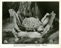 """Movie Posters:Science Fiction, Attack of the Crab Monsters (Allied Artists, 1957). Photo (8"""" X10"""").. ..."""