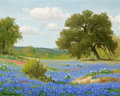 Paintings, PORFIRIO SALINAS (American, 1910-1973). April in Texas. Oil on canvas. 16 x 20 inches (40.6 x 50.8 cm). Signed lower lef...