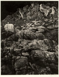 Photographs, EDWARD HENRY WESTON (American, 1886-1958). North Dome (Cliff with Seagull), Point Lobos, 1946. Vintage gelatin ...