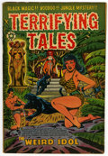 Golden Age (1938-1955):Horror, Terrifying Tales #14 (Star Publications, 1953) Condition: VG-....