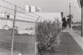 Photographs:20th Century, LEE FRIEDLANDER (American, b. 1934). San Diego, California,from 15 Photographs Portfolio, 1970. Gelatin silver, cir...