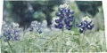 Rugs & Textiles:Tapestries, A Monumental Texas Wildflower Hanging Tapestry: Bluebonnets.. Helena Hernmarck (Sweden, 1941-). 1979. Wool, linen a... (Total:2 Items)