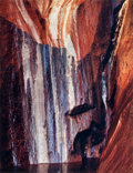 Photographs:Contemporary, ELIOT FURNESS PORTER (American, 1901-1990). Water-Streaked Wall,Warm Spring Canyon, Lake Powell, Utah, from Certain Passa...