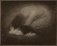EDWARD JEAN STEICHEN (American, 1879-1973) Nude with Cat, from Camera Work Vol. 2 Page 39, 1902-03 H
