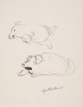 Miscellaneous, Garth Williams. Ink studies of Wilbur, Charlotte's Web....