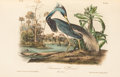 Books:Natural History Books & Prints, John James Audubon. The Birds of America, from Drawings Made in the United States and their Territories. New Yor... (Total: 10 Items)