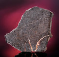 Meteorites:Palasites, A COMPLETE METEORITE SLICE POSSIBLY FROM THE PLANET MERCURY . ...