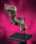 Meteorites:Irons, GIBEON - BIRD-LIKE TABLETOP SCULPTURE FROM OUTER SPACE. ...