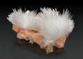 Minerals:Cabinet Specimens, SCOLECITE ON STILBITE. ...