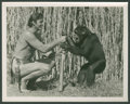 "Movie Posters:Adventure, Tarzan Escapes Lot (MGM, 1936). Photos (4) (8"" X 10""). Adventure..... (Total: 4 Items)"