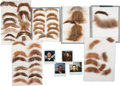 Movie/TV Memorabilia:Props, Wyatt Earp Screen-Used Costume Facial Hair.... (Total: 8 )