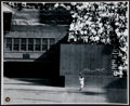 """Baseball Collectibles:Photos, Willie Mays Signed Oversized Print of """"The Catch."""" ..."""