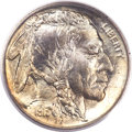 Proof Buffalo Nickels, 1913 5C Type Two PR66 PCGS....