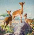 Mainstream Illustration, DUDLEY MOORE BLAKELY (American, 1902-1982). African Dik Dik,1930. Oil on canvas. 36 x 36 in.. Signed lower left. Fr...
