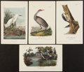 Books:Natural History Books & Prints, John Audubon. Four Hand-Colored Audubon Plates: Snowy Herron,Whooping Crane, Harris's Woodpecker and Yellow Shanks Snipe. P...(Total: 4 Items)