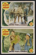 """Movie Posters:Adventure, Tarzan Escapes (MGM, R-1940s). Spanish Language Lobby Cards (2) (11"""" X 14""""). Action Adventure. Starring Johnny Weissmuller, ... (Total: 2 Items)"""