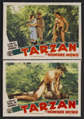 """Movie Posters:Adventure, Tarzan the Ape Man (MGM, R-1940s). Spanish Language Lobby Cards (2)(11"""" X 14""""). Action Adventure. Starring Johnny Weissmull... (Total:2 Items)"""