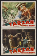 "Movie Posters:Adventure, Tarzan the Ape Man (MGM, R-1940s). Spanish Language Lobby Cards (2)(11"" X 14""). Action Adventure. Starring Johnny Weissmull... (Total:2 Items)"