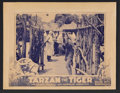 "Movie Posters:Adventure, Tarzan the Fearless Lot (Principal Distributing, 1933). Lobby Cards(2) (11"" X 14"") Chapter 12 -- ""Jungle Justice."" Adventur... (Total:2 Items)"