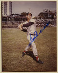 Autographs:Photos, Ted Williams Signed Photograph. Glorious vintage image depictingthe Splendid Splinter has been signed in 10/10 blue sharpi...
