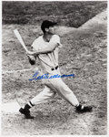Autographs:Photos, Circa 2000 Ted Williams Signed Large Photograph....