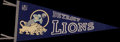 Football Collectibles:Others, Circa 1950's Detroit Lions Pennant....