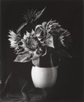 Photographs, PAUL CAPONIGRO (American, b. 1932). Sunflowers, 1989. Gelatin silver, 1992. 12 x 9-3/4 inches (30.5 x 24.8 cm). Ed. 47/7...