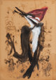 MORRIS GRAVES (American, 1910-2001) Woodpecker, 1943 Tempera and ink on paper 20 x 14 inches (50.8 x 35.6 cm) Signed