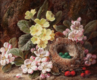 GEORGE CLARE (British, 1830-1900) Still Life with Apple Blossom, Primroses, and Bird's Nest Oil on c