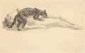Post-War & Contemporary:Contemporary, MEL RAMOS (American, b. 1935). Ocelot, 1967. Graphite onpaper. 16-1/4 x 21 inches (41.3 x 53.3 cm). Signed and dated lo...