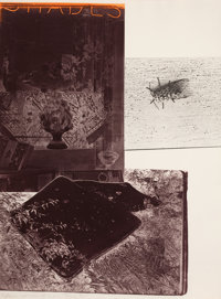 ROBERT RAUSCHENBERG (American, 1925-2008) The Razorback Bunch (Etching I), 1980 Intaglio in colors o